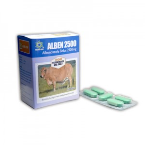 Albendazole Tablet 2500mg