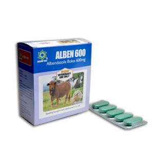 Albendazole Tablet 600mg