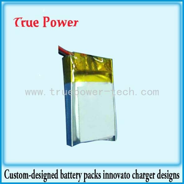 China Cheap price Li Aa - Li-Polymer Battery – True Power