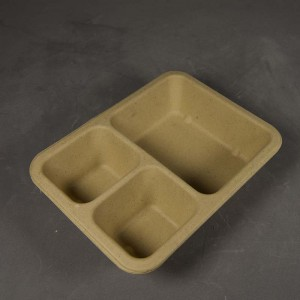 High Quality Dyed Pulp Packaging - Consumer Product Tray – Dingtian