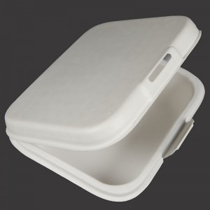 OEM/ODM Factory Pulp Cup Holder Tray - Lunch Box – Dingtian