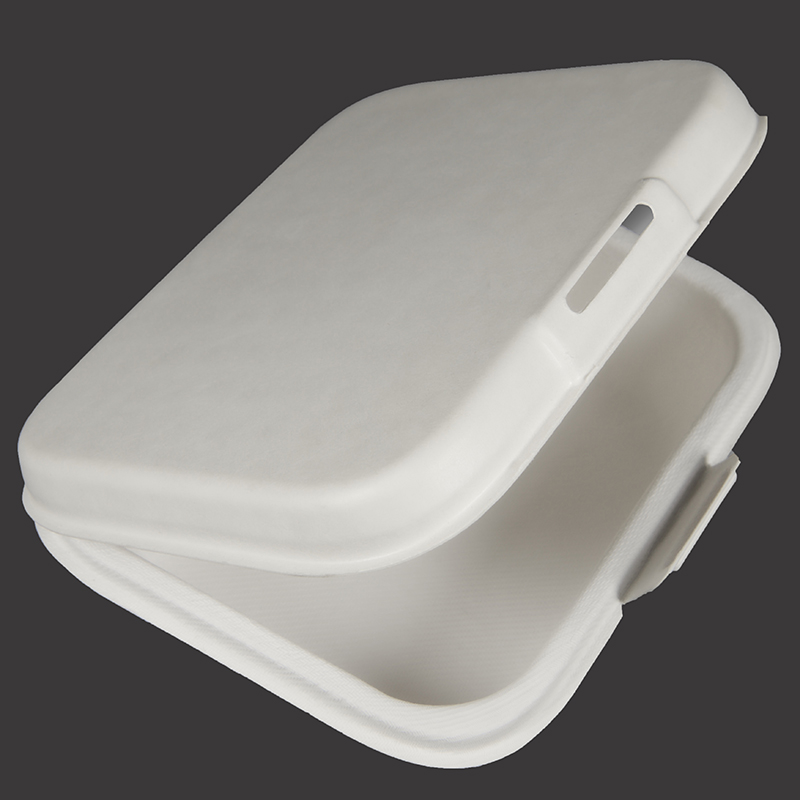 OEM Supply Pulp Fiber Trays – Lunch Box – Dingtian