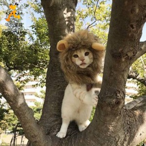 Lion Small Ears Wig Dog Hat Pet Wig Turned into Hat Funny Hat Cat Headgear