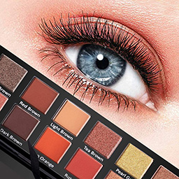 Eye Shadow applicaion