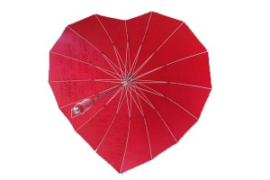 Heart style couple umbrella