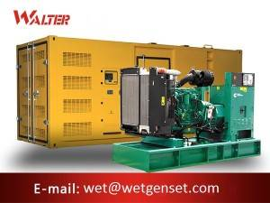Top Suppliers Silent Containerized Mobile Generators - Container engine diesel generator – Walter