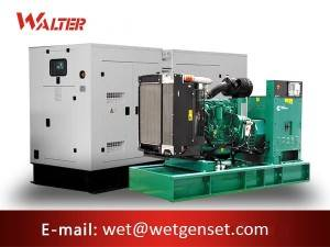 Fixed Competitive Price Shangchai Diesel Generator - 50HZ 30kva Cummins engine diesel generator – Walter