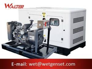 factory low price Cummins Diesel Genset - 50HZ 20kva Perkins engine diesel generator – Walter