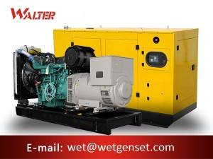 factory low price Cummins Diesel Genset - 60HZ 200kva Volvo engine diesel generator – Walter