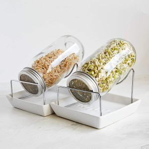 Seed Sprouting Jar Kit 2 Sprouter Mason Jars wi...