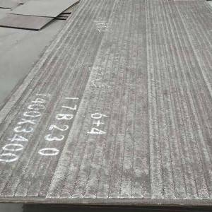 8 Year Exporter Wear Plates For Buckets - WD1000/WD1100 Wear Plates – Wodon