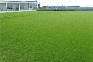 45mm Premium Autumn commercial Synthetic turf