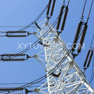 500kV double loop angle tower
