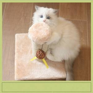 Small cat toy funny cat sepak takraw Cat scratching post, small scratch-resistant, bite-resistant and wear-resistant small cat scratching post