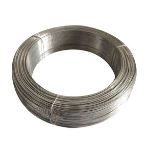 Hot Sale  Small Coil Galvanized Bindind wire