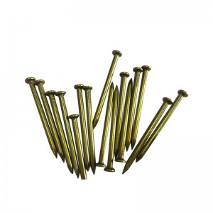 Factory selling 8 Penny Galvanized Nails - Specialized factory produce yellow zinc  steel nail  form china – YouYou