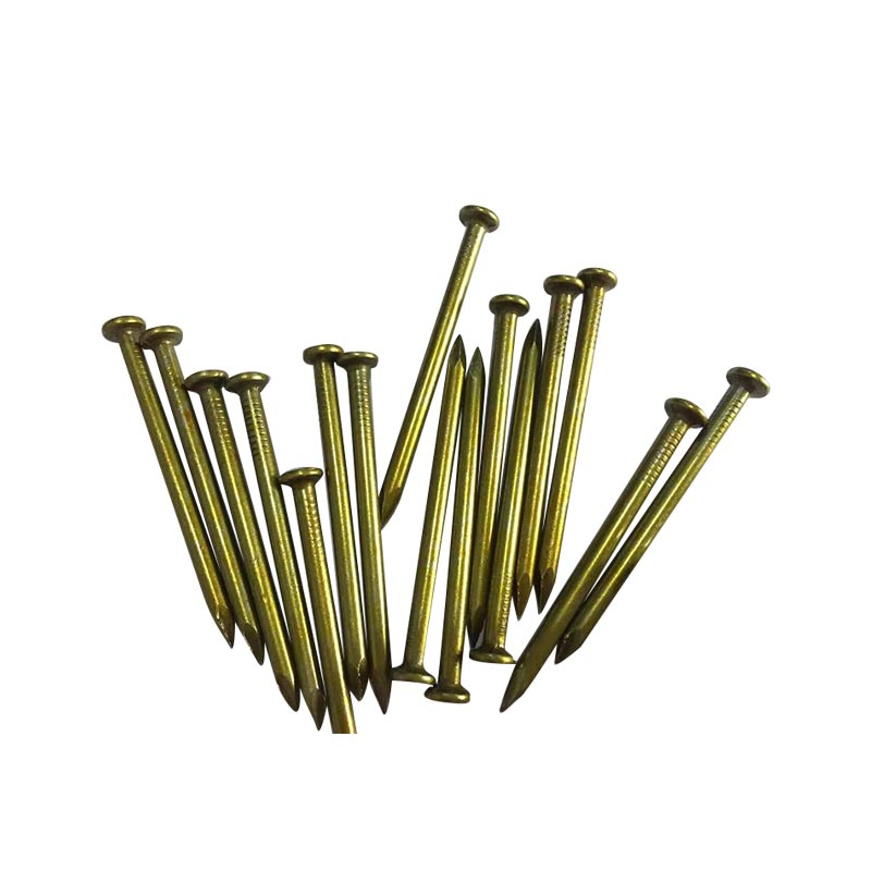High reputation Yellow Steel Nail - Specialized factory produce yellow zinc  steel nail  form china – YouYou