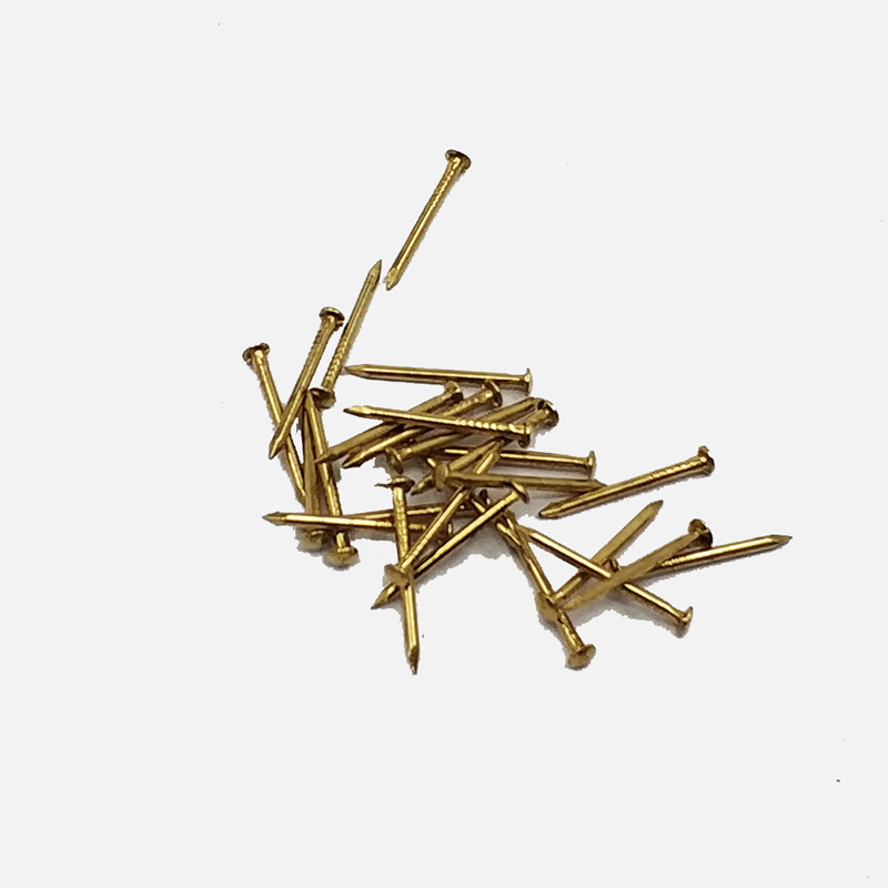 Rapid Delivery for Hot Dipped Galvanized Coil Roofing Nails - Yellow steel nail   – YouYou