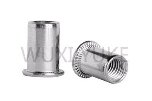 China wholesale 304 Stainless Steel Rivet Nut Flat Head Insert - Flat Head Cylindrical Rivet Nut – Yuke