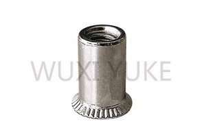 2020 Good Quality 304 Stainless Steel Rivet Nut Embedded Insert - CSK Head Open End Rivet Nut – Yuke