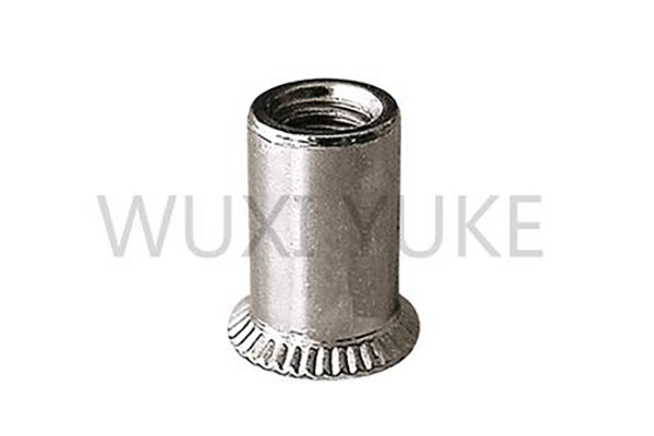 New Fashion Design for Flat Head Rivet Nut Threaded Multi - CSK Head Open End Rivet Nut – Yuke detail pictures