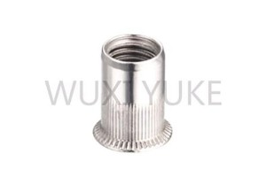 2020 Latest Design Flat Hex Rivet Nut Rivnut Insert Nutsert - Rivet Nut Countersunk Knurled Open End description – Yuke