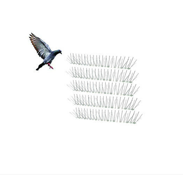 Anti pigeon Bird spikes Top grade Manufacturer Featured Image