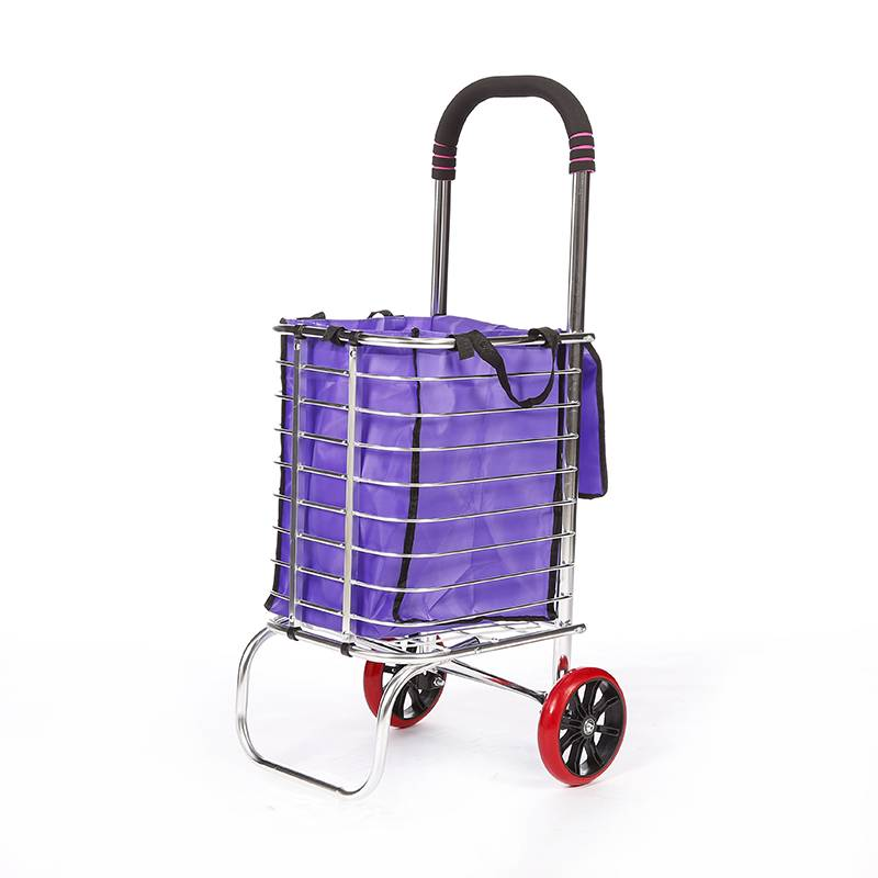 China Wholesale Shopping Trolleys For The Elderly Factory - Shopping Cart DG1005 – DuoDuo