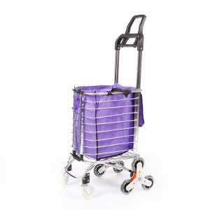 DuoDuo Shopping Cart DG1015 With 3 Swivel Wheels & Removable Canvas Bag