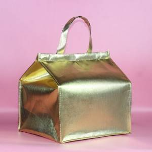 Velcro gold non woven insulated lunch cooler bag, ice bag with film for freezing food and lunch