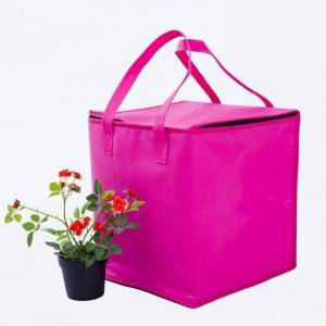 Wholesale Ice Cooler Bag Waterproof - Zipper rose-red nonwoven heat preservation bag non woven Picnic lunch can cooler bag – Zhihongda