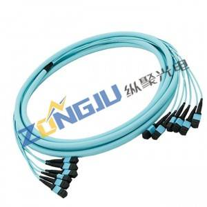 Cheap price Fiber Pigtail - MTP OM4 Patch Cord –  Zongju