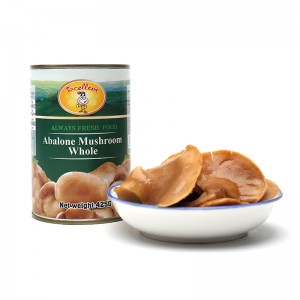 Canned Abalone Mushroom Whole