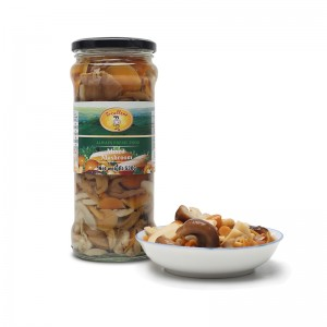 Factory wholesale Spicy Canned Mackerel In Tomato Sauce - Marinated Mixed Mushroom – Excellent Company